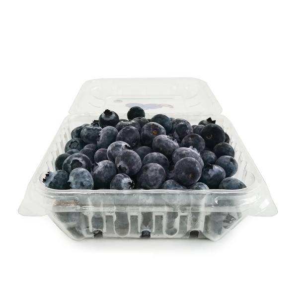 Blueberry / Beri Biru (125g +/-)